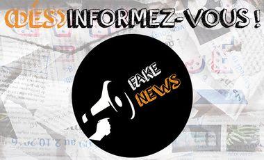 Project visual Fake News - Désinformez-vous !