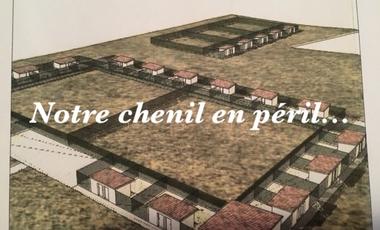 Project visual Notre chenil en péril...