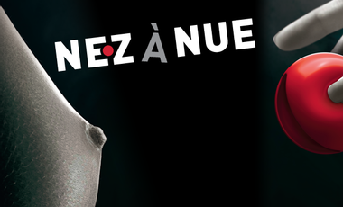 """Project visual """"Nez à Nue"""" - Avignon Off 2013"""